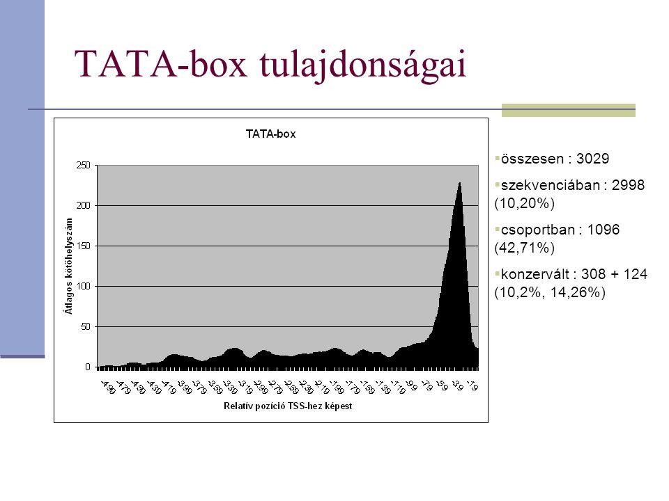 TATA-box tulajdonságai  összesen : 3029  szekvenciában : 2998 (10,20%)  csoportban : 1096 (42,71%)  konzervált : 308 + 124 (10,2%, 14,26%)