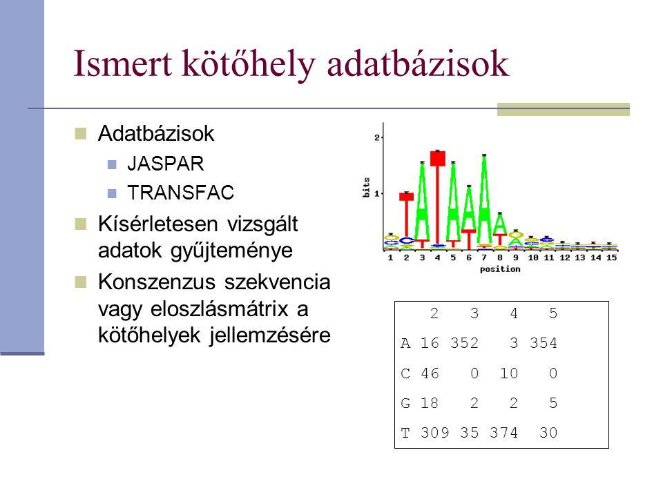 Ismert kötőhely adatbázisok Adatbázisok JASPAR TRANSFAC Kísérletesen vizsgált adatok gyűjteménye Konszenzus szekvencia vagy eloszlásmátrix a kötőhelyek jellemzésére 2 3 4 5 A 16 352 3 354 C 46 0 10 0 G 18 2 2 5 T 309 35 374 30
