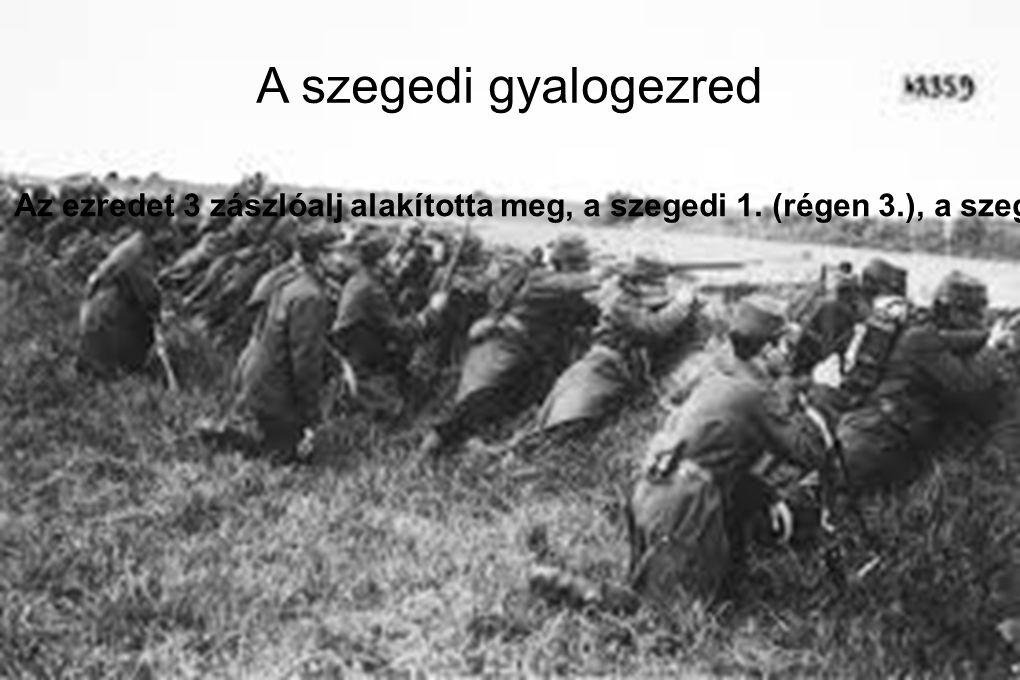 A szegedi gyalogezred Az ezredet 3 zászlóalj alakította meg, a szegedi 1. (régen 3.), a szegedi 2. (előtte 13.) és a becskereki 3. (előtte 14. ). Az e