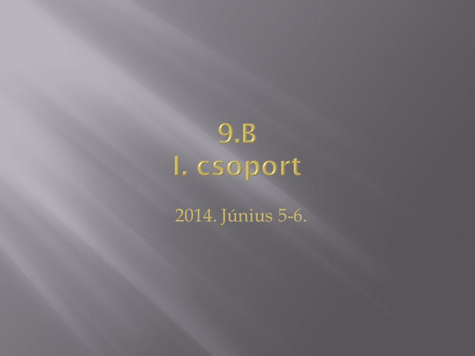 2014. Június 5-6.