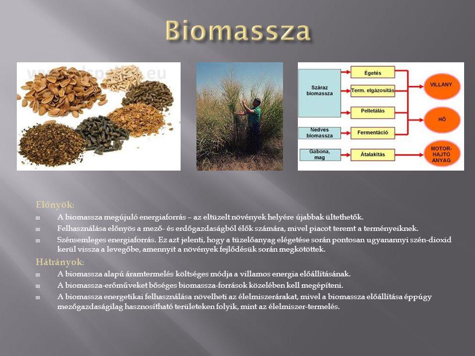 Előnyök :  A biomassza megújuló energiaforrás – az eltüzelt növények helyére újabbak ültethetők.  Felhasználása előnyös a mező- és erdőgazdaságból é