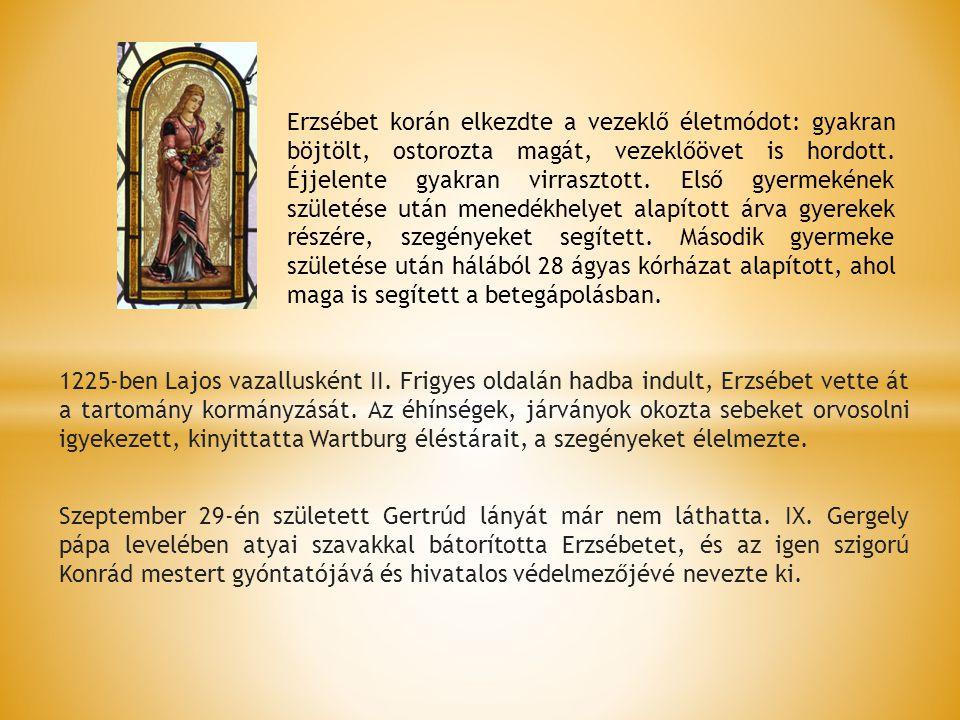 1225-ben Lajos vazallusként II. Frigyes oldalán hadba indult, Erzsébet vette át a tartomány kormányzását. Az éhínségek, járványok okozta sebeket orvos