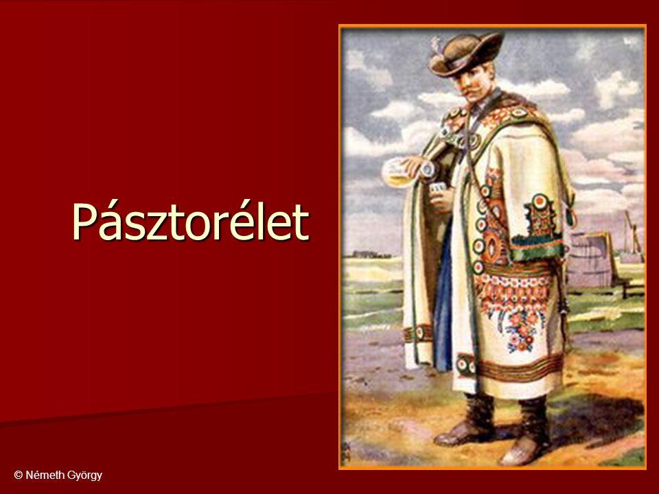 Pásztorélet © Németh György