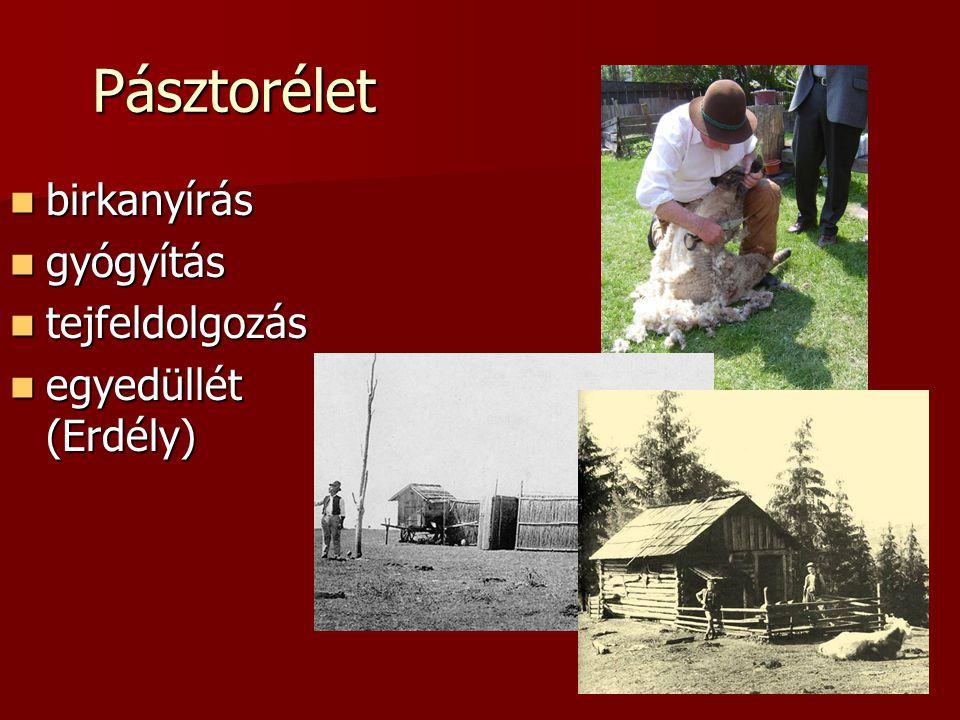 Pásztorélet birkanyírás birkanyírás gyógyítás gyógyítás tejfeldolgozás tejfeldolgozás egyedüllét (Erdély) egyedüllét (Erdély)
