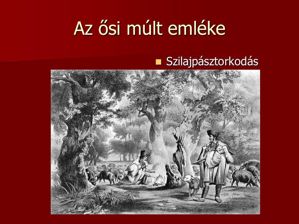 Az ősi múlt emléke Szilajpásztorkodás Szilajpásztorkodás