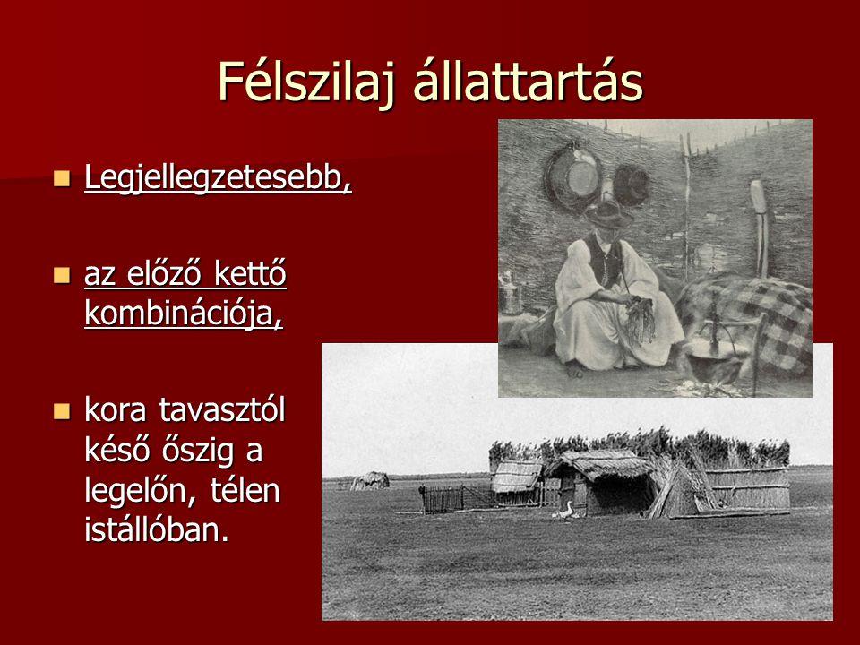Pásztorünnepek Gazdasági ünnepek csoportjába tartoznak Gazdasági ünnepek csoportjába tartoznak –állatok kihajtása (ápr.