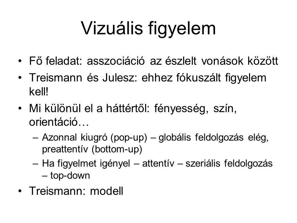 Vizuális figyelem Fő feladat: asszociáció az észlelt vonások között Treismann és Julesz: ehhez fókuszált figyelem kell! Mi különül el a háttértől: fén