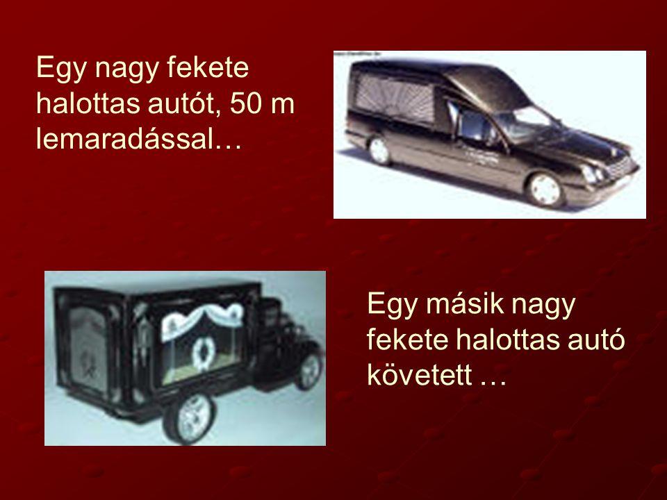 Egy nagy fekete halottas autót, 50 m lemaradással… Egy másik nagy fekete halottas autó követett …