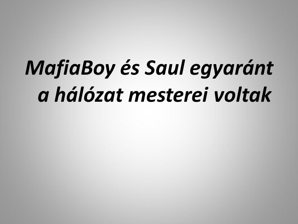 MafiaBoy és Saul egyaránt a hálózat mesterei voltak