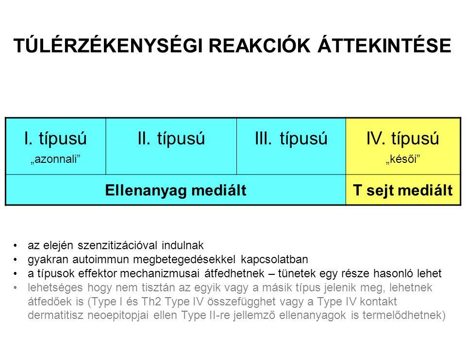 AZ ELLENANYAG MEDIÁLT TÚLÉRZÉKENYSÉGI REAKCIÓK TÍPUSAI Ellenanyag izotípus Antigén Effektor mechanizmus Példa Szolubilis antigén Hízósejt aktiváció Allergiás rhinitis, asthma bronchiale, anaphylaxia Szolubilis antigén Komplement, fagociták Sejtfelszíni receptor Sejtfelszíni vagy mátrix- kötött antigén Az ellenanyag megváltoztatja a jelátvitelt Komplement, Fc  R + sejtek (fagociták, NK-sejtek) Egyes gyógyszer- érzékenységek (pl.