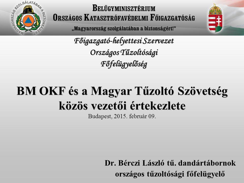 Dr. Bérczi László tű. dandártábornok országos tűzoltósági főfelügyelő Főigazgató-helyettesi Szervezet Országos Tűzoltósági Főfelügyelőség BM OKF és a