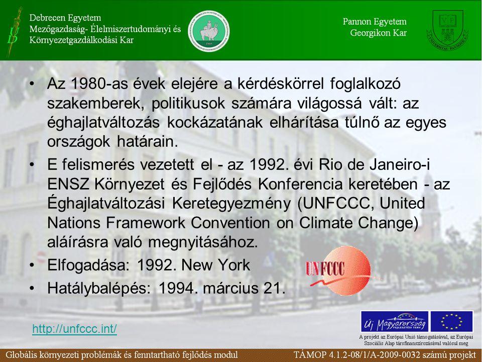 Az 1980-as évek elejére a kérdéskörrel foglalkozó szakemberek, politikusok számára világossá vált: az éghajlatváltozás kockázatának elhárítása túlnő az egyes országok határain.