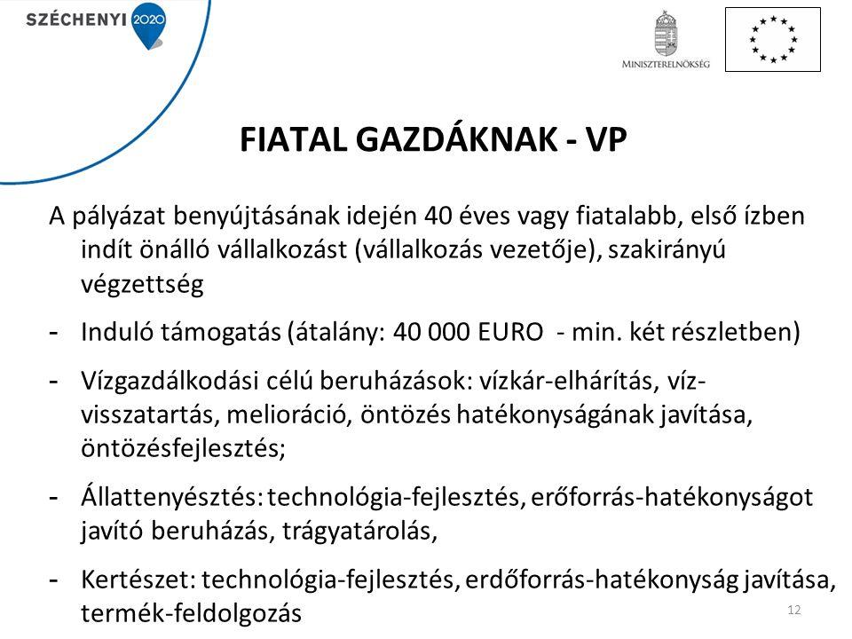 FIATAL GAZDÁKNAK - VP A pályázat benyújtásának idején 40 éves vagy fiatalabb, első ízben indít önálló vállalkozást (vállalkozás vezetője), szakirányú