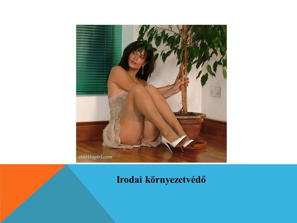 Irodai környezetvédő