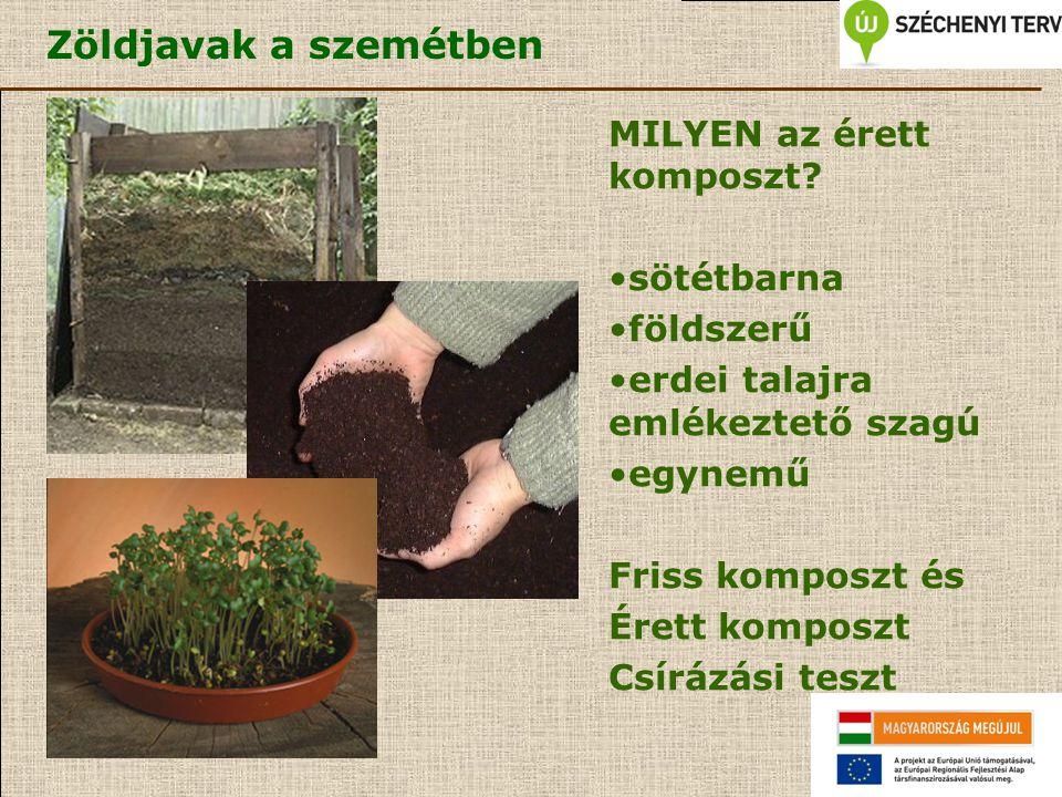 Zöldjavak a szemétben MILYEN az érett komposzt? sötétbarna földszerű erdei talajra emlékeztető szagú egynemű Friss komposzt és Érett komposzt Csírázás