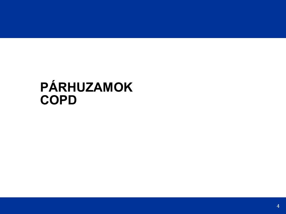 4 PÁRHUZAMOK COPD