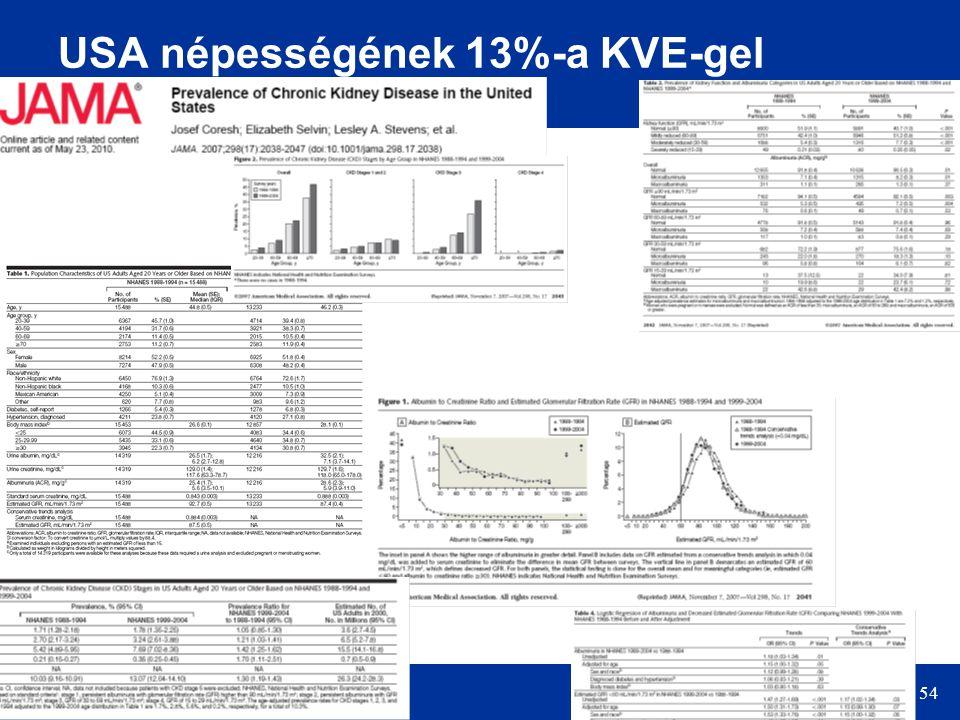 54 USA népességének 13%-a KVE-gel érintett