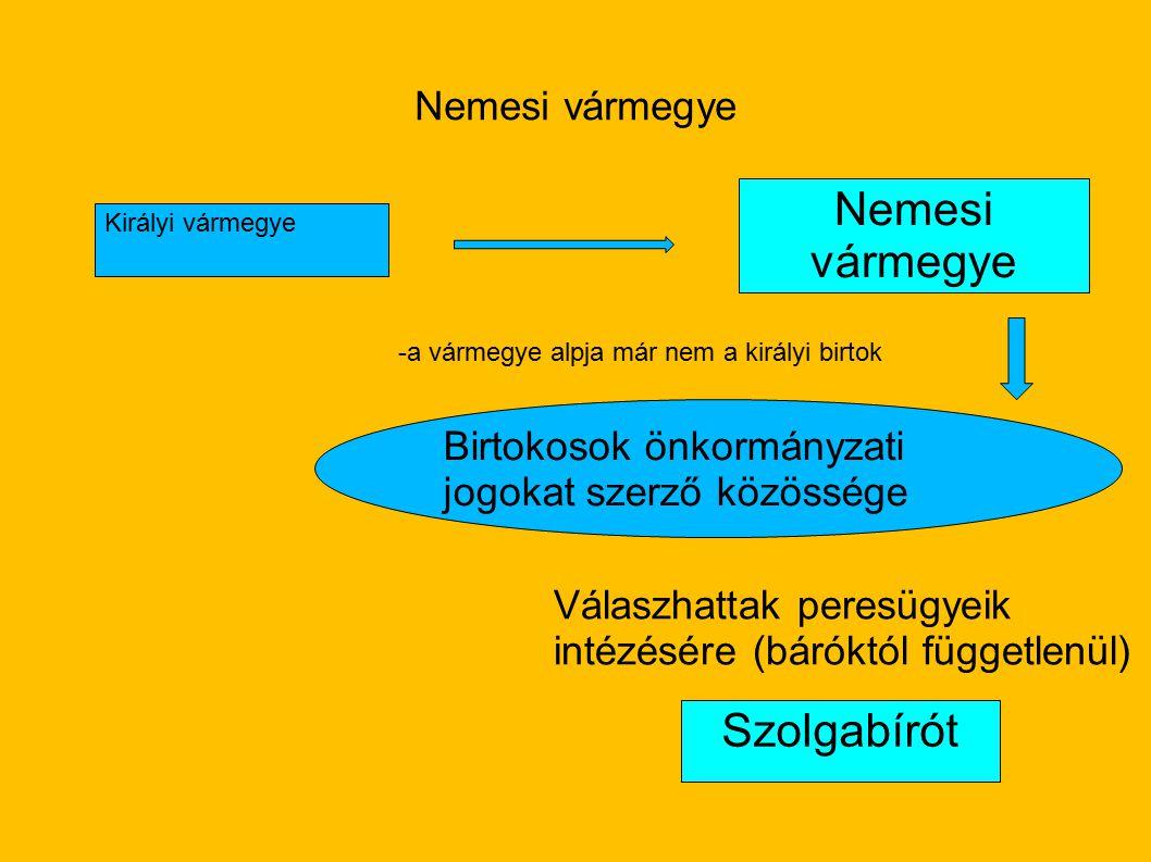 Nemesi vármegye Királyi vármegye Nemesi vármegye -a vármegye alpja már nem a királyi birtok Birtokosok önkormányzati jogokat szerző közössége Szolgabí