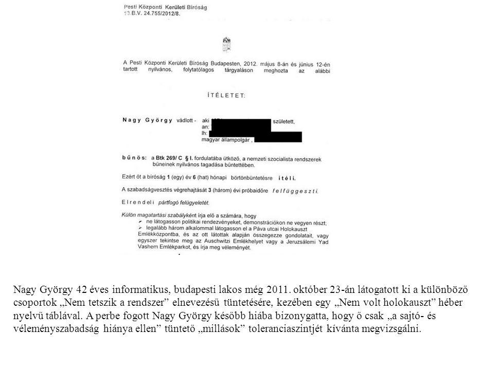 Nagy György 42 éves informatikus, budapesti lakos még 2011.