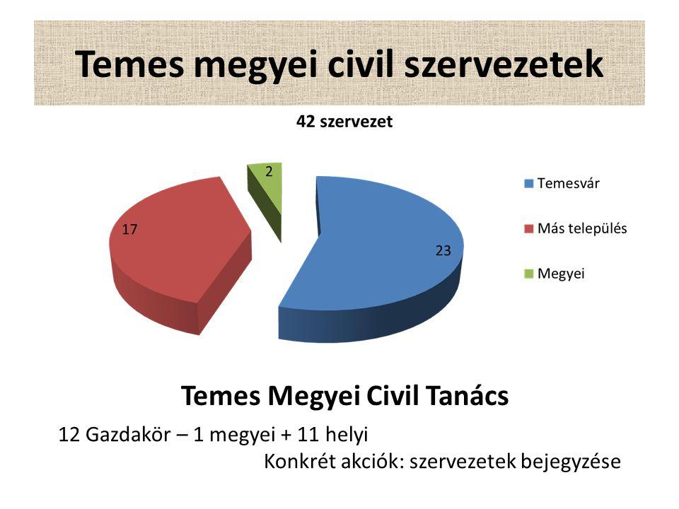 Temes megyei civil szervezetek Temes Megyei Civil Tanács 12 Gazdakör – 1 megyei + 11 helyi Konkrét akciók: szervezetek bejegyzése