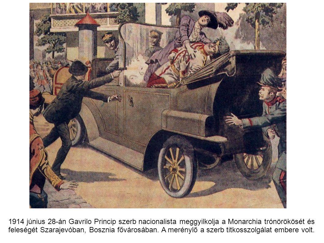 1914 június 28-án Gavrilo Princip szerb nacionalista meggyilkolja a Monarchia trónörökösét és feleségét Szarajevóban, Bosznia fővárosában. A merénylő