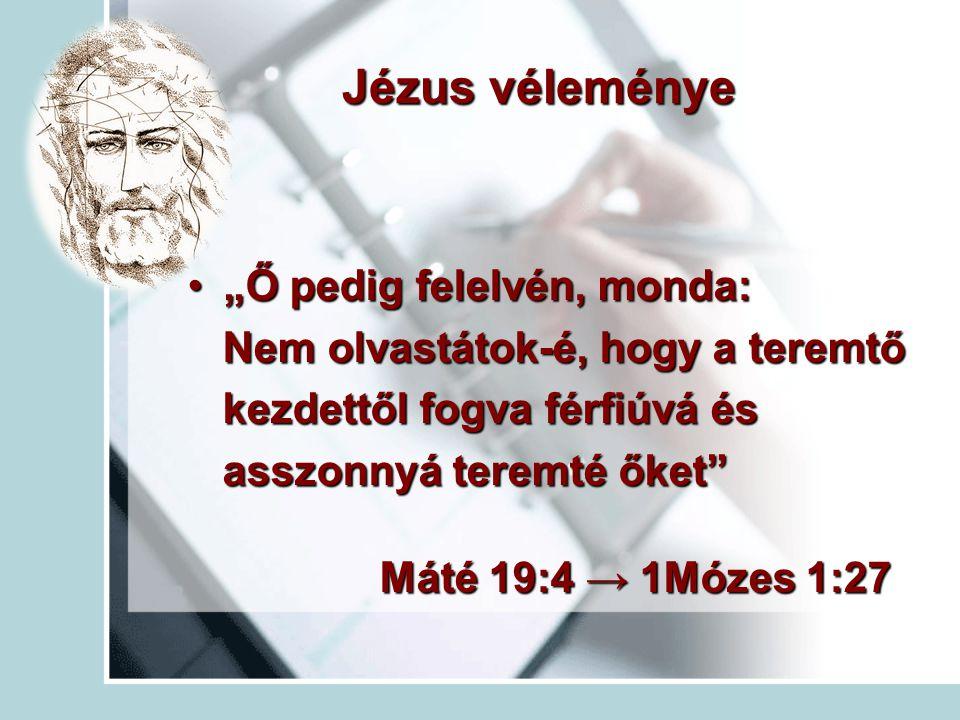 """Jézus véleménye """"Ő pedig felelvén, monda:""""Ő pedig felelvén, monda: Nem olvastátok-é, hogy a teremtő Nem olvastátok-é, hogy a teremtő kezdettől fogva f"""