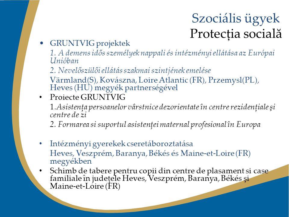 Szociális ügyek Protecţia socială GRUNTVIG projektek 1. A demens idős személyek nappali és intézményi ellátása az Európai Unióban 2. Nevelőszülői ellá