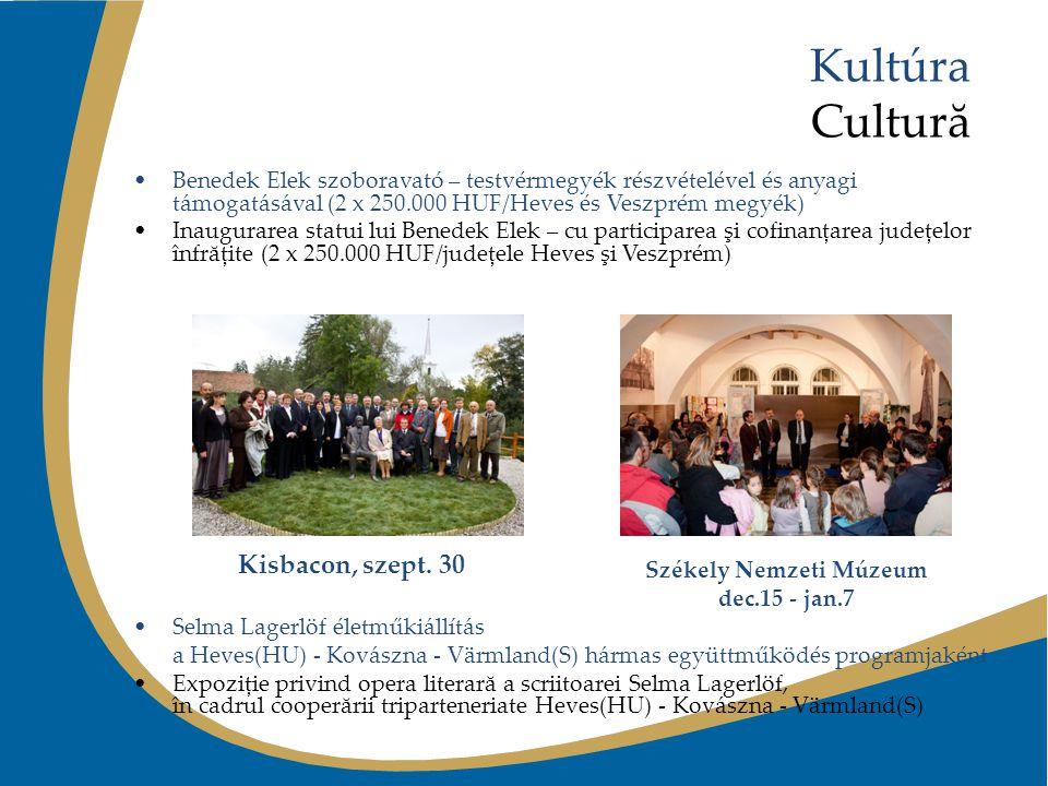 Kultúra Cultură Benedek Elek szoboravató – testvérmegyék részvételével és anyagi támogatásával (2 x 250.000 HUF/Heves és Veszprém megyék) Inaugurarea