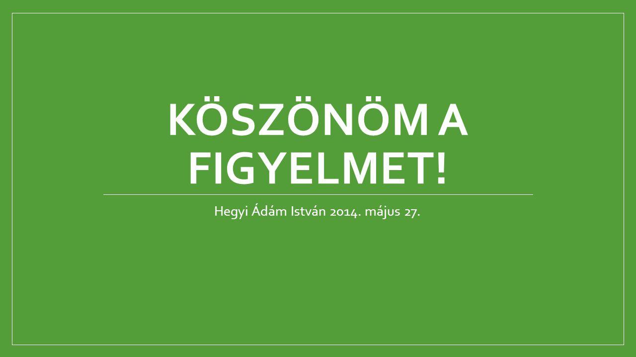 KÖSZÖNÖM A FIGYELMET! Hegyi Ádám István 2014. május 27.