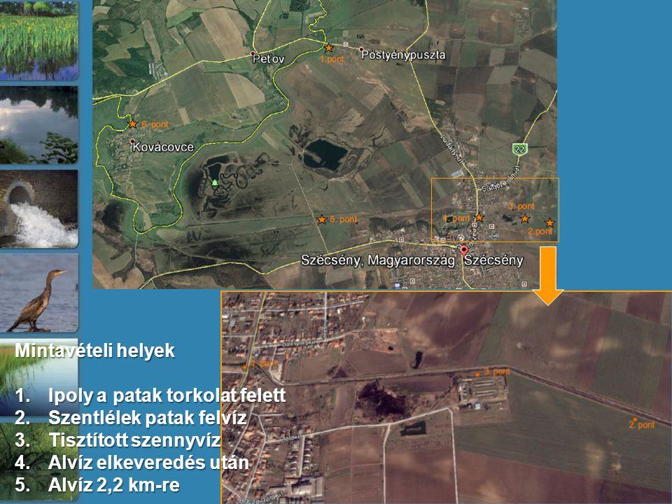 Mintavételi helyek 1.Ipoly a patak torkolat felett 2.Szentlélek patak felvíz 3.Tisztított szennyvíz 4.Alvíz elkeveredés után 5.Alvíz 2,2 km-re
