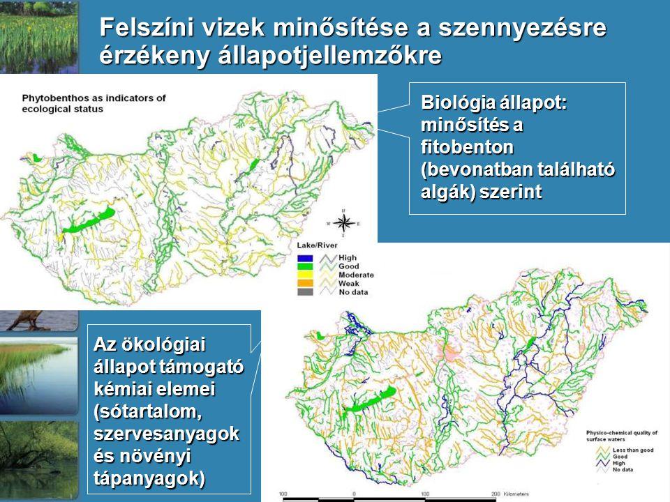 Felszíni vizek minősítése a szennyezésre érzékeny állapotjellemzőkre Biológia állapot: minősítés a fitobenton (bevonatban található algák) szerint Az ökológiai állapot támogató kémiai elemei (sótartalom, szervesanyagok és növényi tápanyagok)