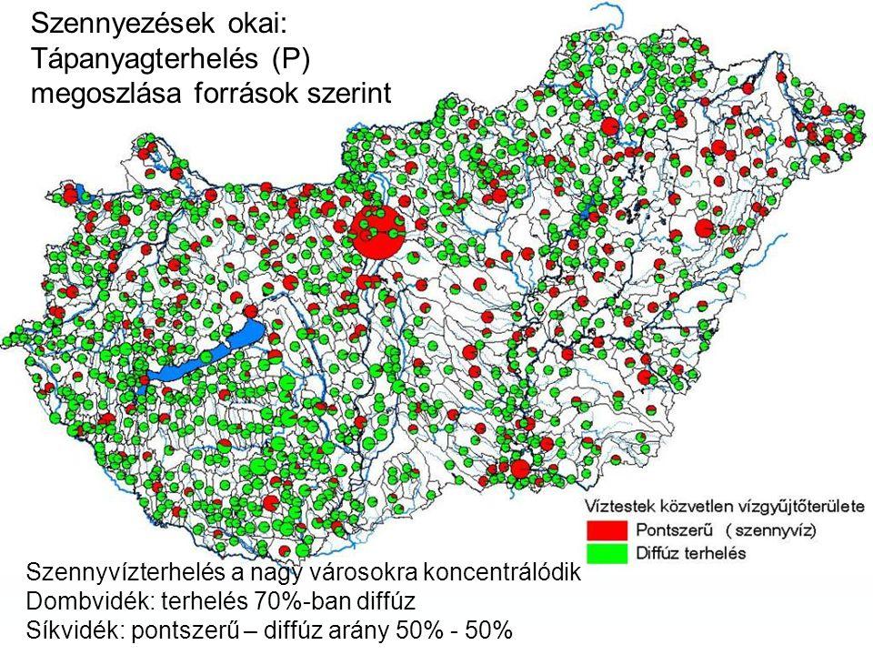 Szennyezések okai: Tápanyagterhelés (P) megoszlása források szerint Szennyvízterhelés a nagy városokra koncentrálódik Dombvidék: terhelés 70%-ban diffúz Síkvidék: pontszerű – diffúz arány 50% - 50%