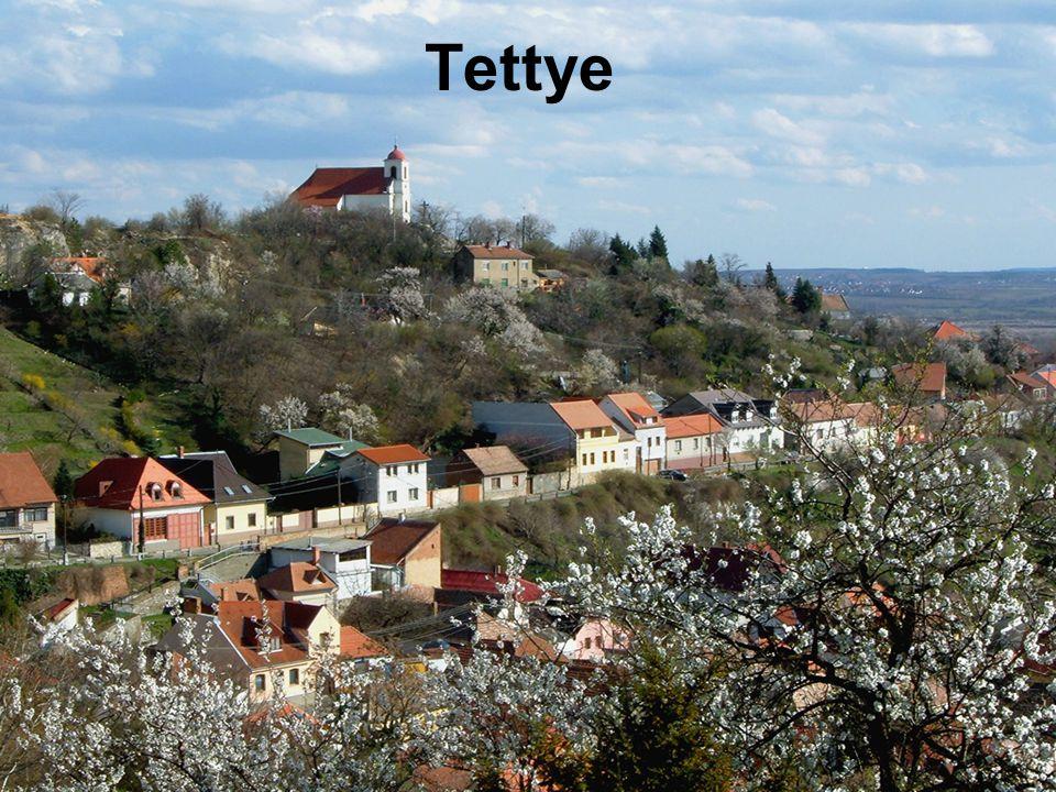  Tettye Pécs városának egyik legfestőibb tájaarkkal, romokkal, barlanggal és arborétummal.