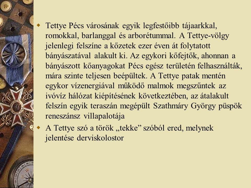  Tettye Pécs városának egyik legfestőibb tájaarkkal, romokkal, barlanggal és arborétummal. A Tettye-völgy jelenlegi felszíne a kőzetek ezer éven át f