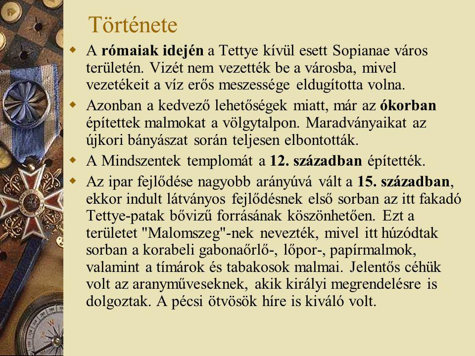 Története  A rómaiak idején a Tettye kívül esett Sopianae város területén. Vizét nem vezették be a városba, mivel vezetékeit a víz erős meszessége el