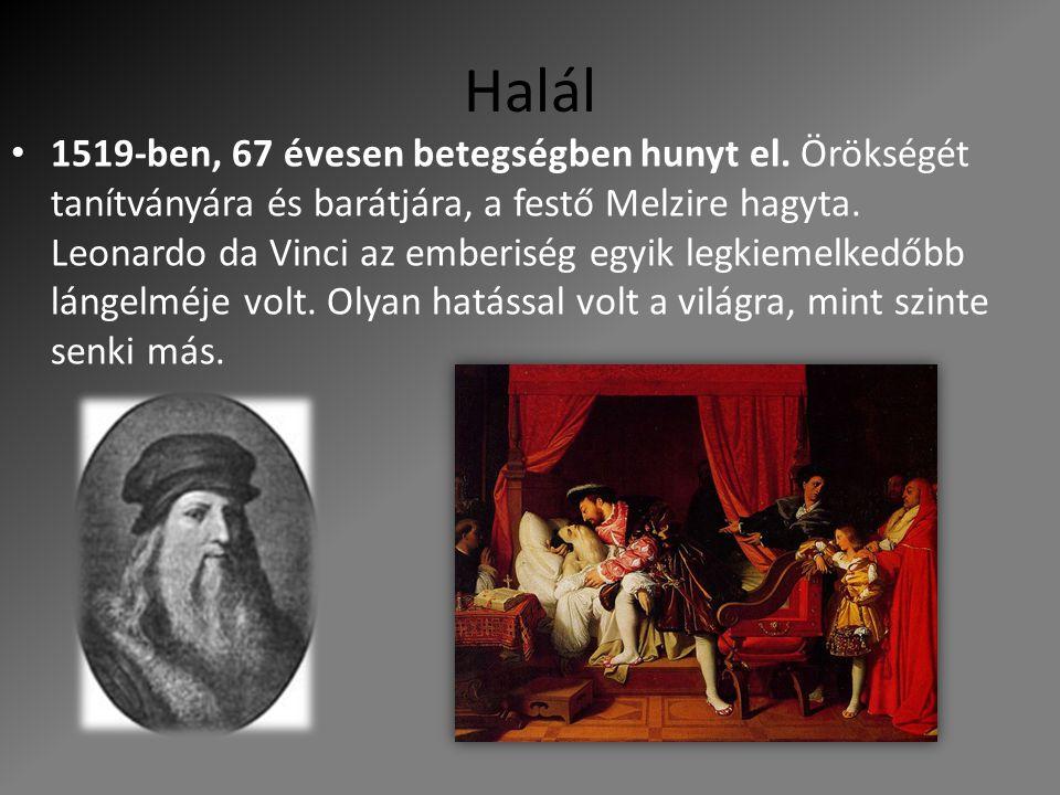 Halál 1519-ben, 67 évesen betegségben hunyt el. Örökségét tanítványára és barátjára, a festő Melzire hagyta. Leonardo da Vinci az emberiség egyik legk