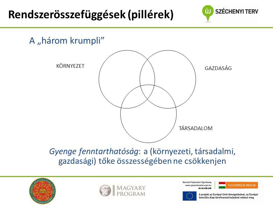"""A """"három krumpli Gyenge fenntarthatóság: a (környezeti, társadalmi, gazdasági) tőke összességében ne csökkenjen KÖRNYEZET TÁRSADALOM GAZDASÁG Rendszerösszefüggések (pillérek)"""