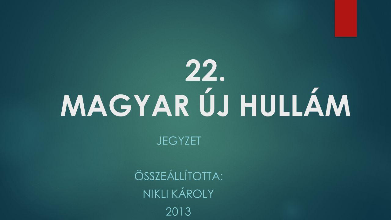 22. MAGYAR ÚJ HULLÁM JEGYZET ÖSSZEÁLLÍTOTTA: NIKLI KÁROLY 2013