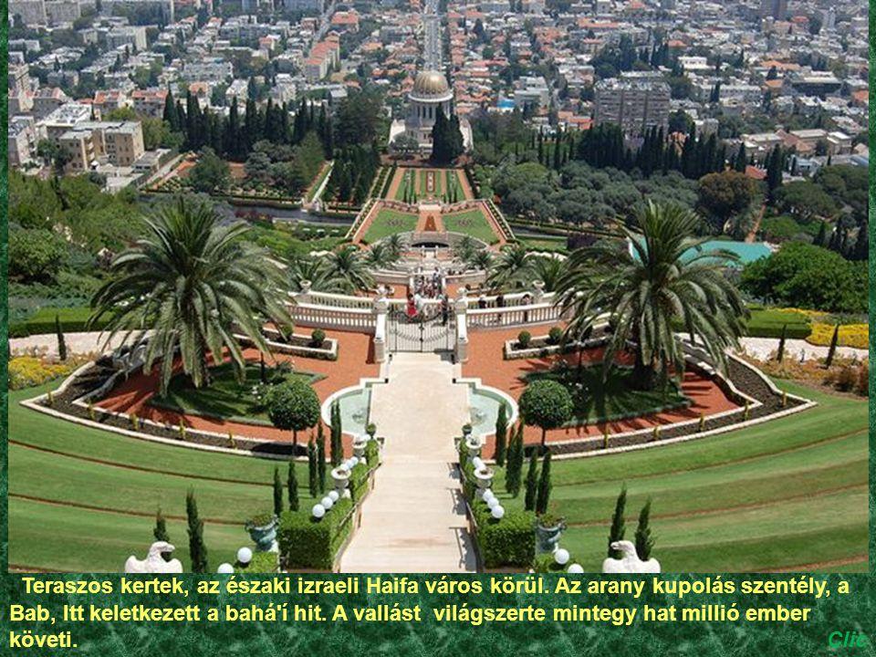 Teraszos kertek, az északi izraeli Haifa város körül.