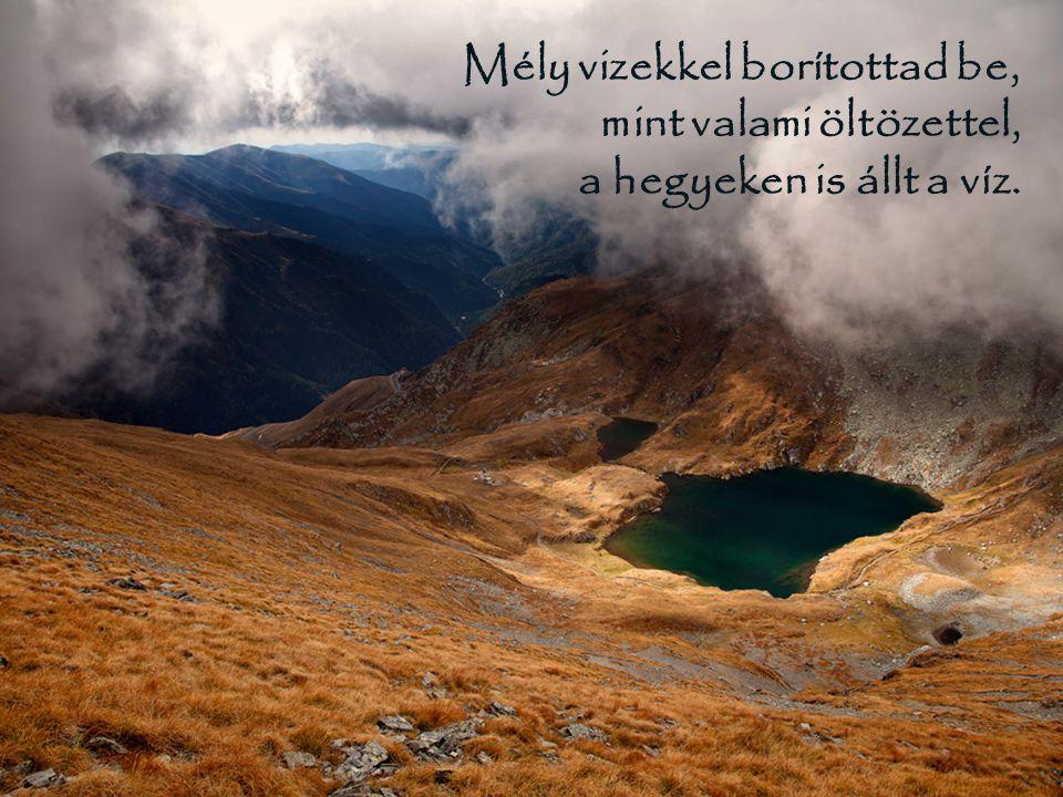 Mély vizekkel borítottad be, mint valami öltözettel, a hegyeken is állt a víz.