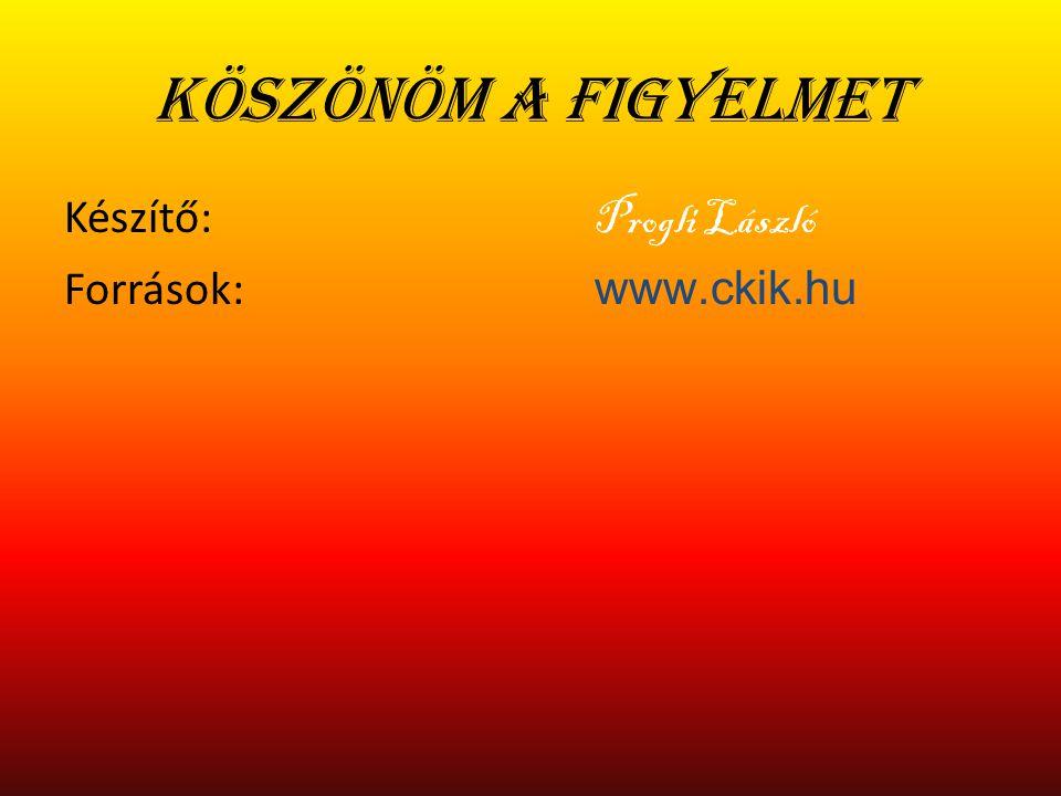 Köszönöm a figyelmet Készítő: Progli László Források: www.ckik.hu