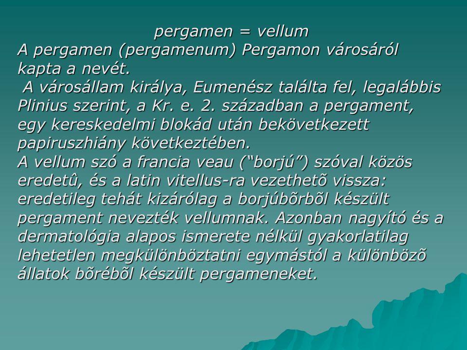 pergamen = vellum A pergamen (pergamenum) Pergamon városáról kapta a nevét. A városállam királya, Eumenész találta fel, legalábbis Plinius szerint, a