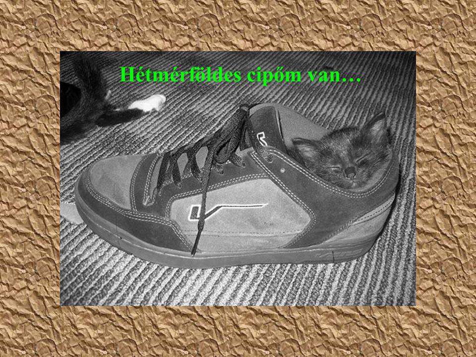 Hétmérföldes cipőm van…