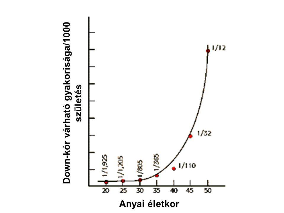 Anyai életkor Down-kór várható gyakorisága/1000 születés