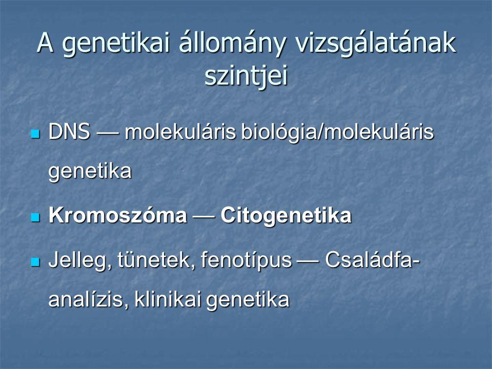 A genetikai állomány vizsgálatának szintjei DNS — molekuláris biológia/molekuláris genetika DNS — molekuláris biológia/molekuláris genetika Kromoszóma — Citogenetika Kromoszóma — Citogenetika Jelleg, tünetek, fenotípus — Családfa- analízis, klinikai genetika Jelleg, tünetek, fenotípus — Családfa- analízis, klinikai genetika