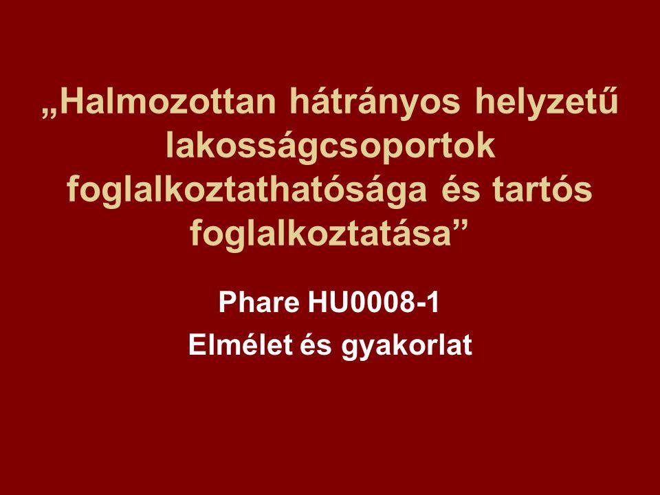 """""""Halmozottan hátrányos helyzetű lakosságcsoportok foglalkoztathatósága és tartós foglalkoztatása Phare HU0008-1 Elmélet és gyakorlat"""