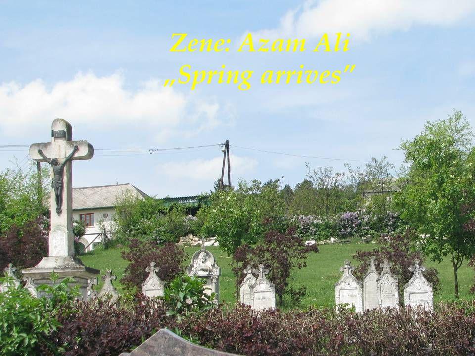 """Zene: Azam Ali """"Spring arrives"""""""