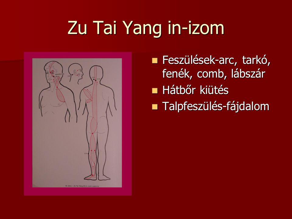 Zu Tai Yang in-izom Feszülések-arc, tarkó, fenék, comb, lábszár Feszülések-arc, tarkó, fenék, comb, lábszár Hátbőr kiütés Hátbőr kiütés Talpfeszülés-fájdalom Talpfeszülés-fájdalom