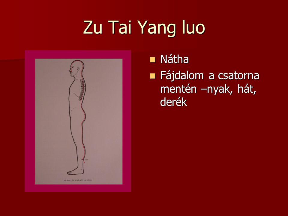 Zu Tai Yang luo Nátha Nátha Fájdalom a csatorna mentén –nyak, hát, derék Fájdalom a csatorna mentén –nyak, hát, derék