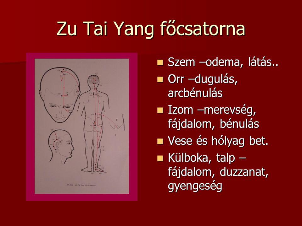 Zu Tai Yang főcsatorna Szem –odema, látás..Szem –odema, látás..